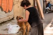 A Georgian lady feeding a community dog in Saburtalo