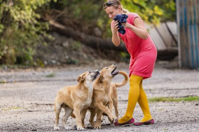 Sara reconquers her working trousers from three street dog pups