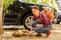 Salome, one of the active people of Tbilisi caring about community dogs