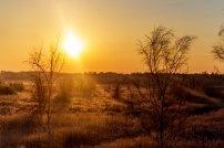 Sunrise in Central Ukraine