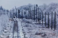 Winter Impressions
