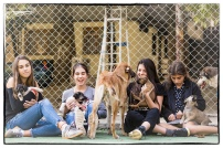 Kids and dogs in Saburtalo